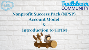 Nonprofit Success Pack Account Model and Introduction to TDTM